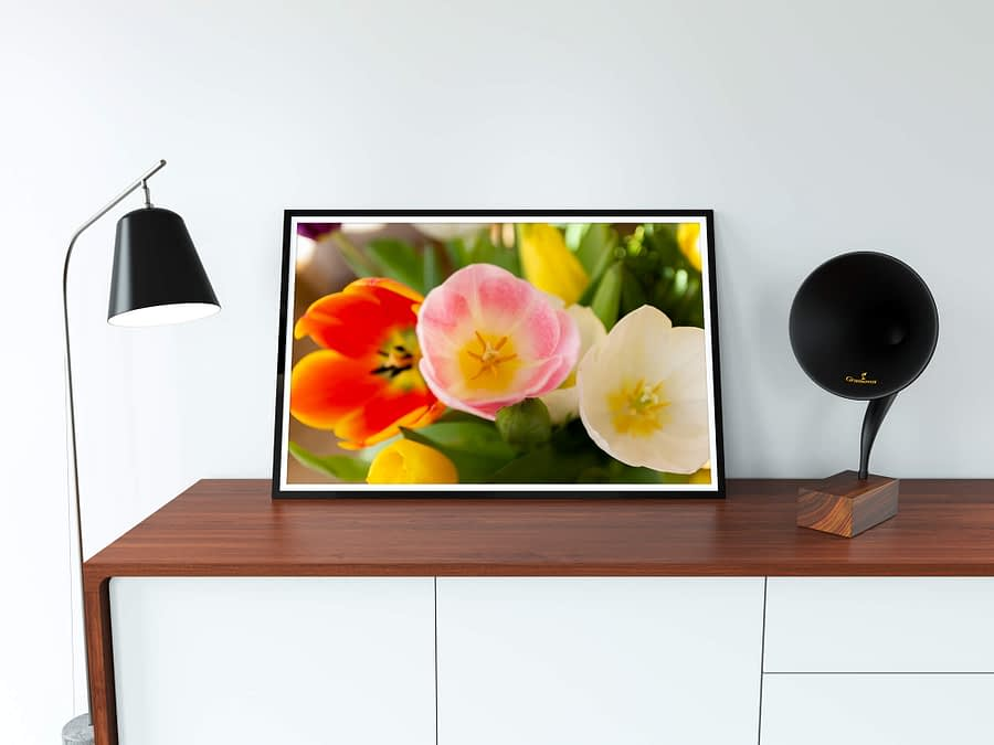 tulpen bloemen poster
