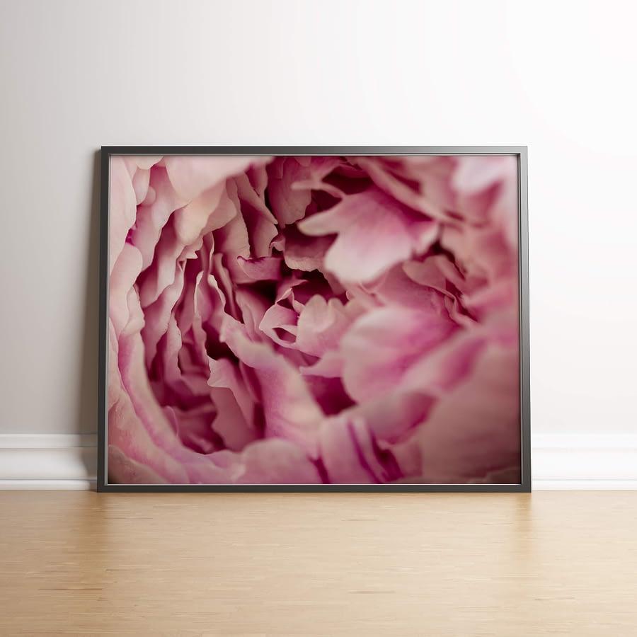 Botanische Poster van Roze Pioenroos