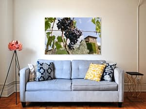 Tussen de Toscaanse Druivenranken Poster - Natuur Wanddecoratie