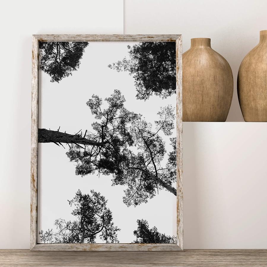 zwart-wit print van bomen - natuur poster en print
