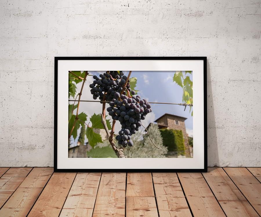 Tussen de Toscaanse Druivenranken Poster
