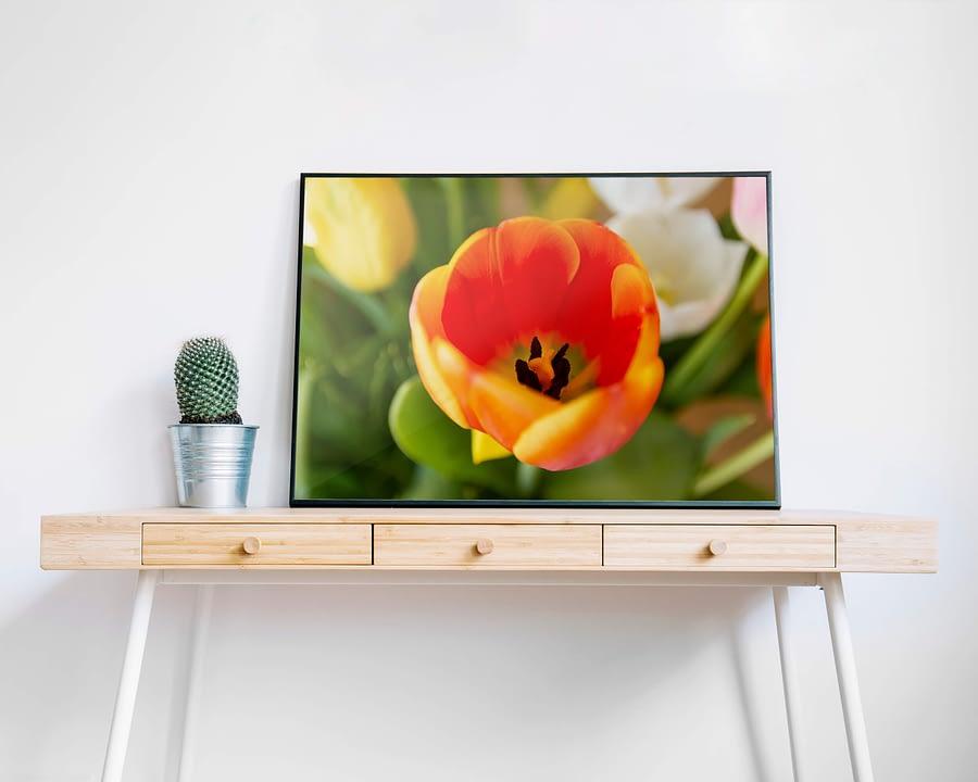 Oranje Tulp Macrofotografie Poster - Natuur Wanddecoratie